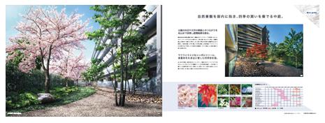 アデニウム板橋浮間公園